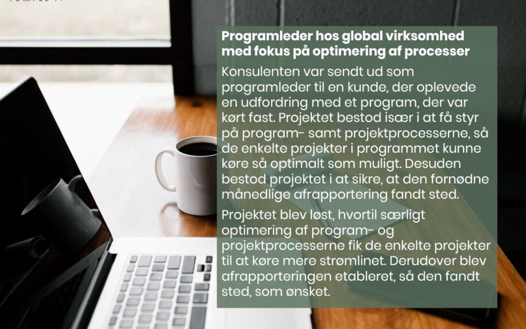 Programleder i global virksomhed med fokus på optimering af processer