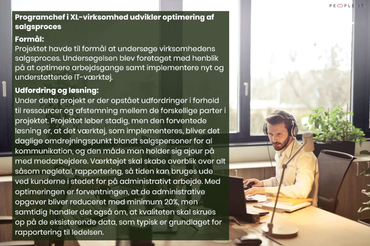Freelance IT Konsulent